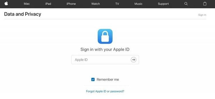 apples data and privacy webpage