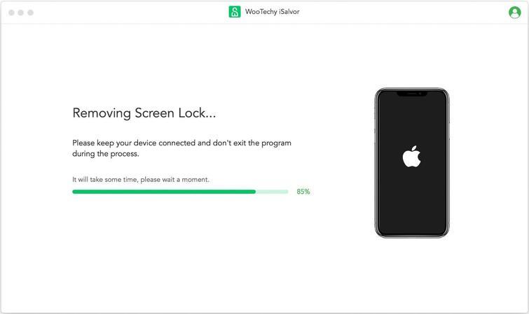 isalvor removing screen lock