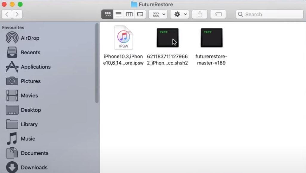 put ipsw shsh2 futurerestore in one folder