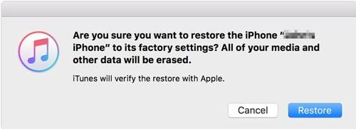 verify the restore